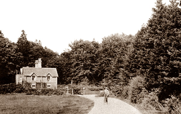 Buchan Hill Lodge in 1920. The drive leads on to the house. Behind the camera a turning on the left leads to Shelley Farm, credit..