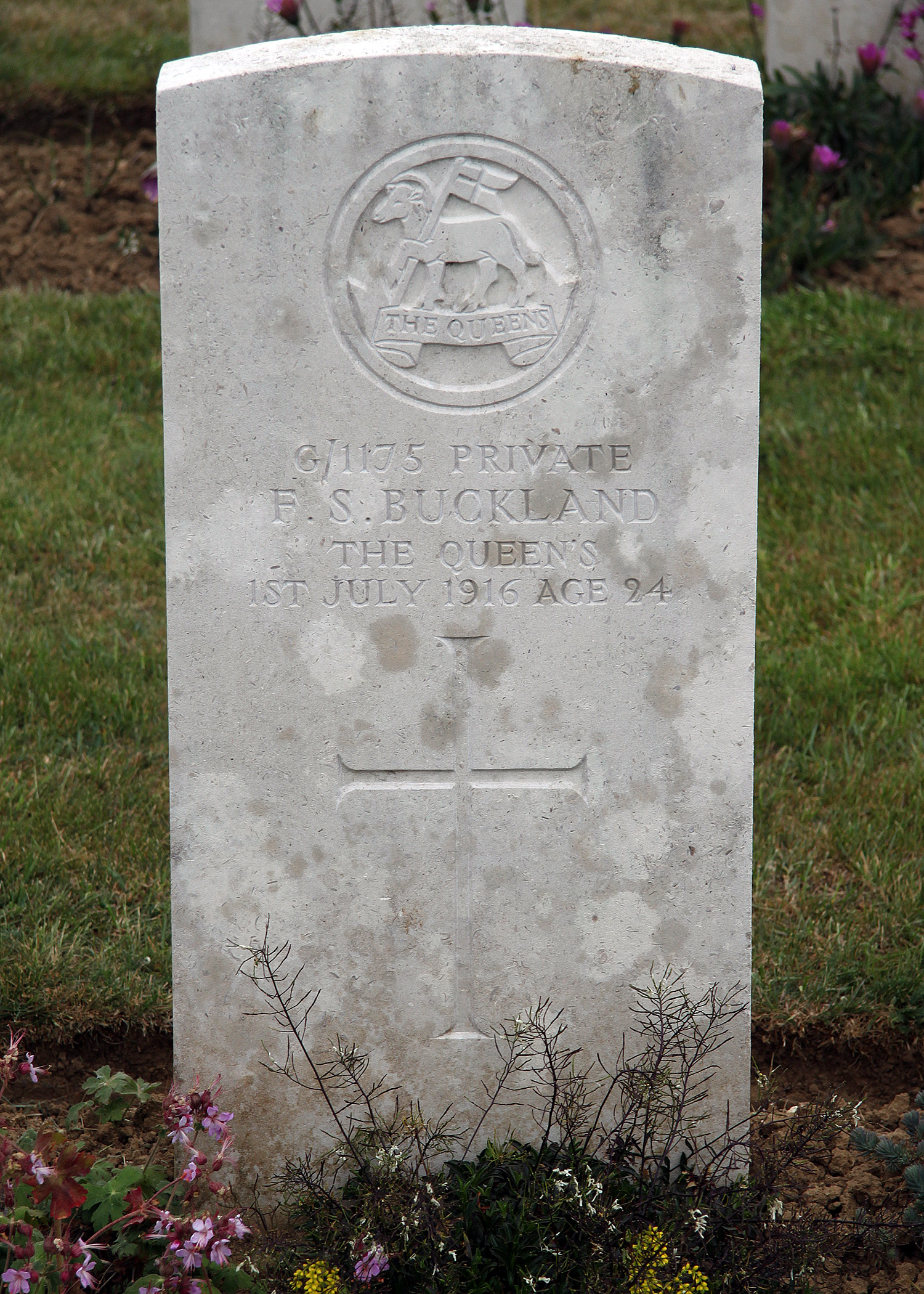 Frederick Buckland's grave
