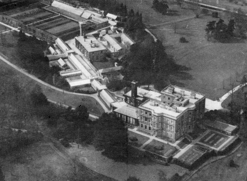 The gardens surround the Mansion, a most notable feature being the extensive run of glasshouses (Ranmore Archive)