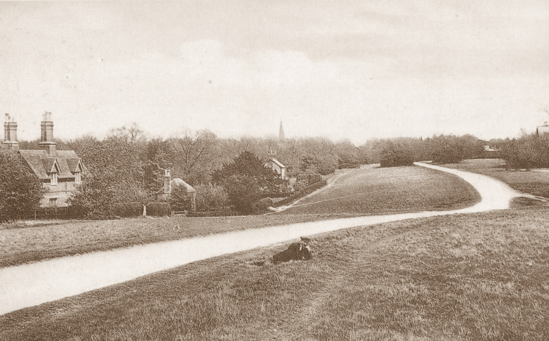 Fox Cottages about 1906. The spire of St Barnabas is in the background.