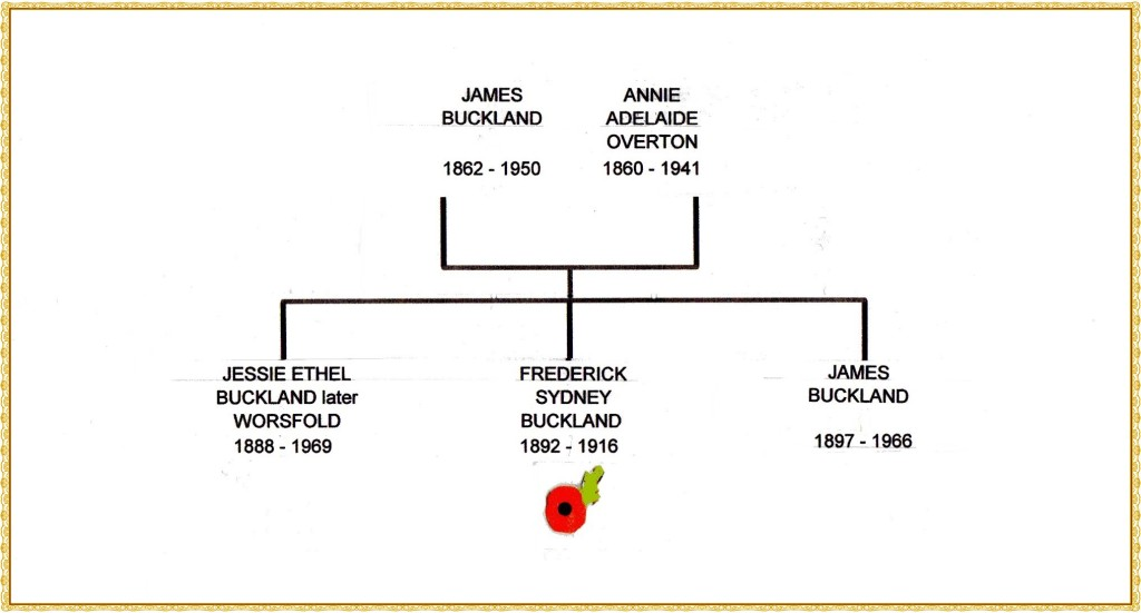 Buckland family tree092 edited AND FRAME nO 2