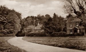 The farthest house is West Cottage on the ... Road, where the Bradleys lived from 1911, from the collection of Alison Newton (check wording) Friths