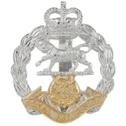 royal-hampshire-regiment_badge