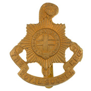 royal-sussex-regiment_badge NAM 1916