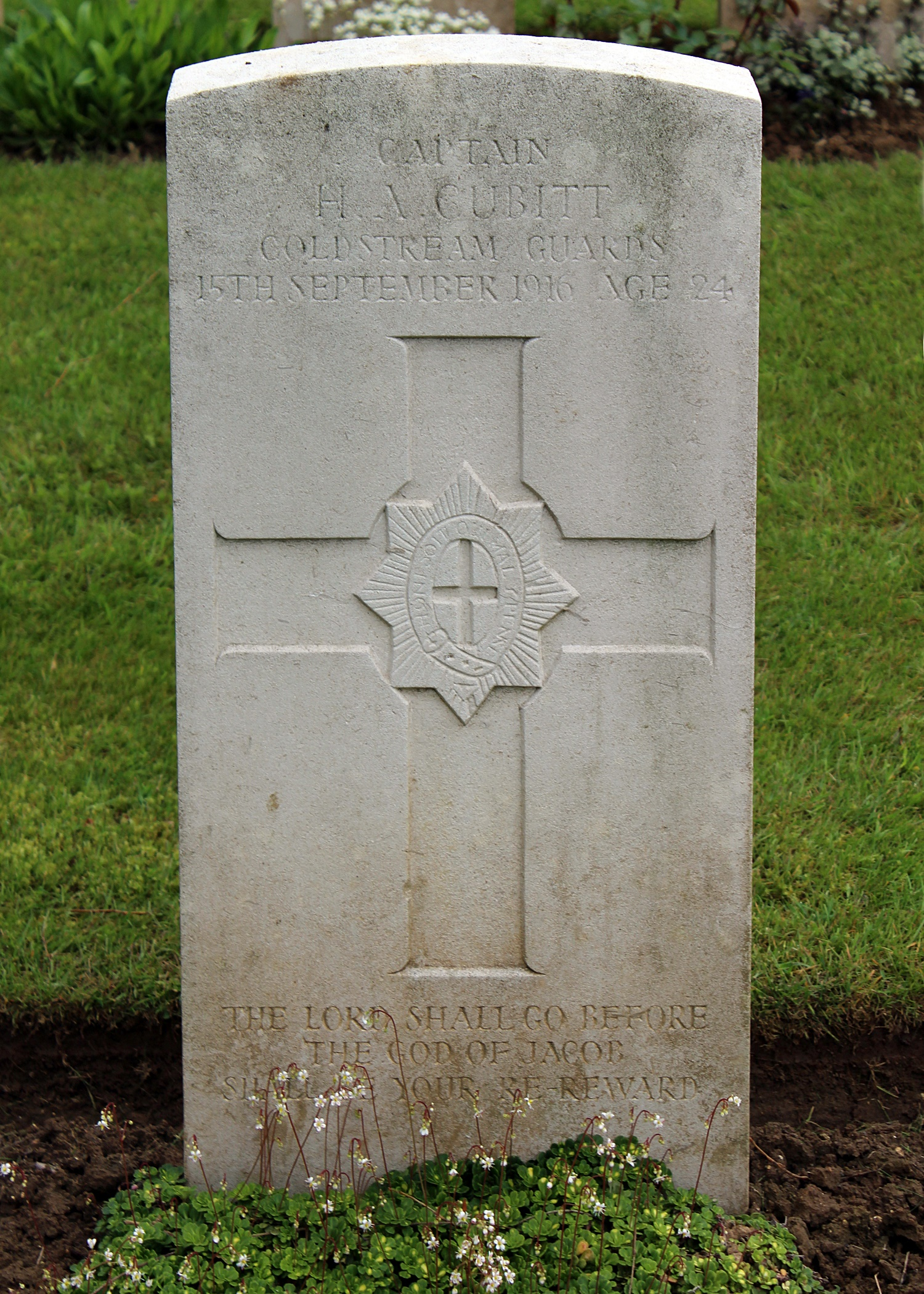 nry Archibald's grave at Carnoy ( The War Graves Photographic