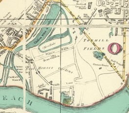 Neethouse Gardens in 1812 - later developed by Thomas Cubitt as South Belgravia or
