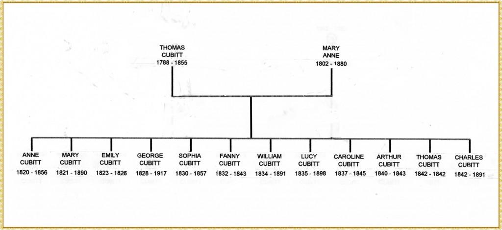 Thomas Cubitt tree framed