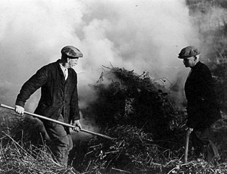 George Royal and Fred Hodginson burning scrub in Hogden Lane