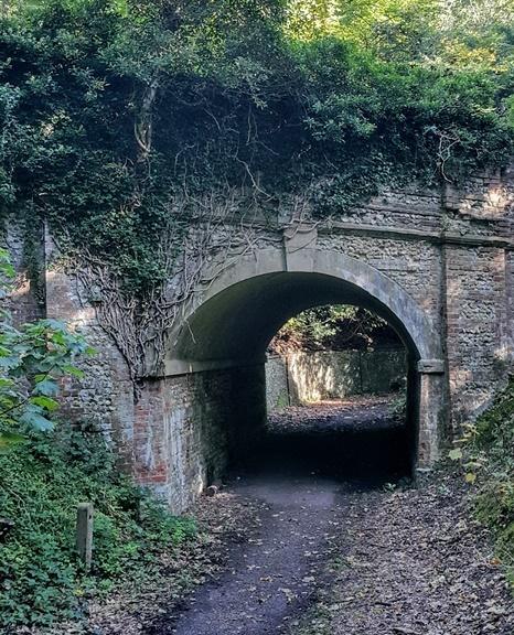 Tunnel under Ranmore Road (John Tacon)
